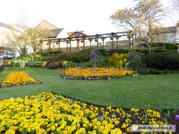 Wetherby Blumenbeet 2020